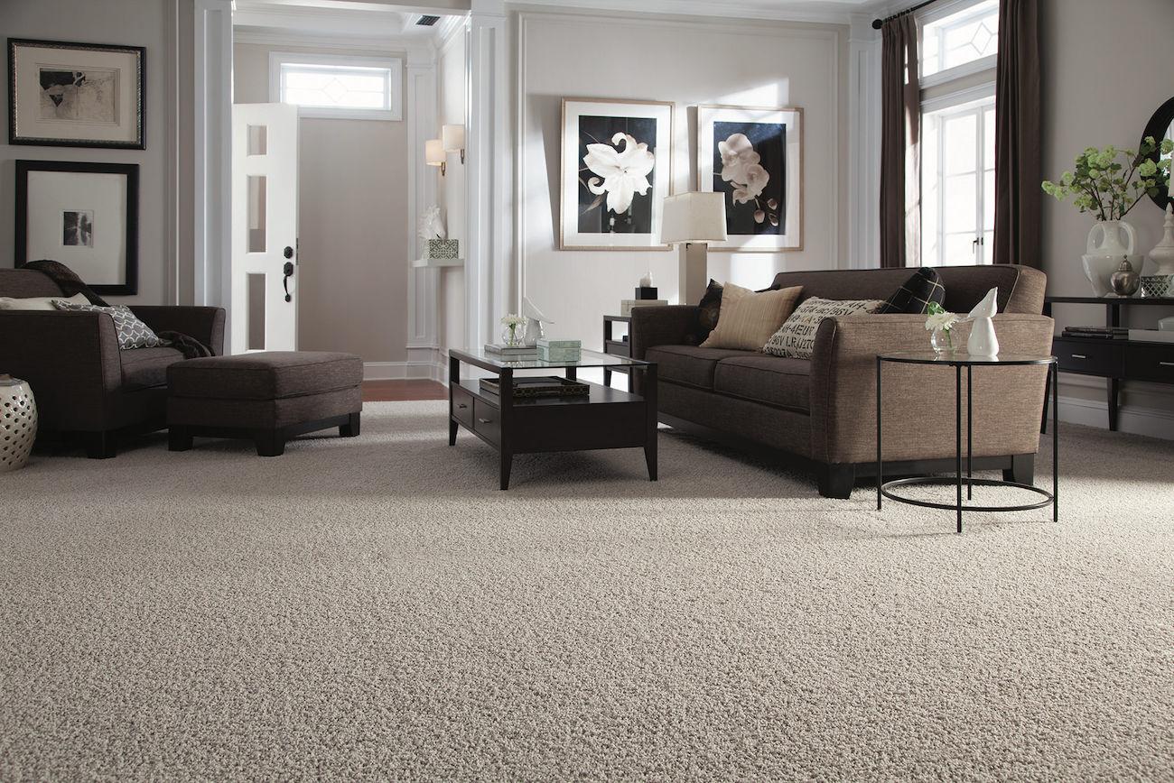 carpet flooring reviews pros cons