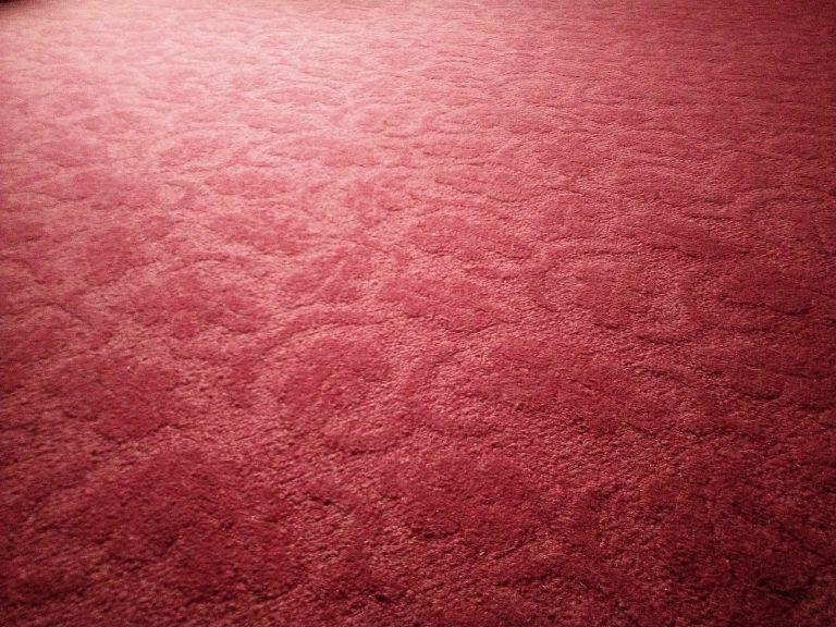 Best Ways To Prevent Carpet Mold