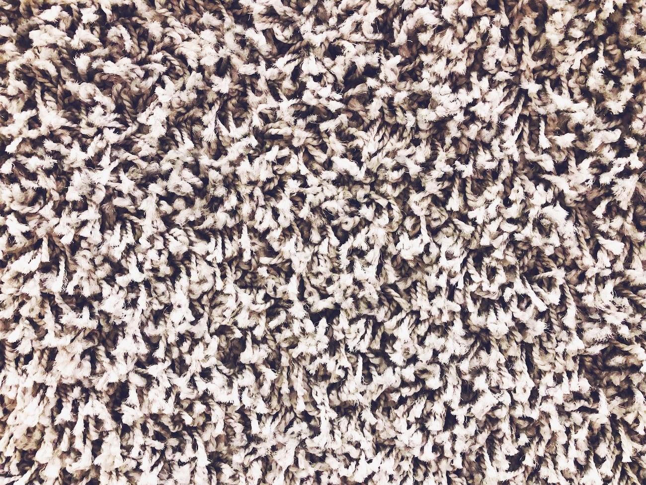 Frieze Carpet Review