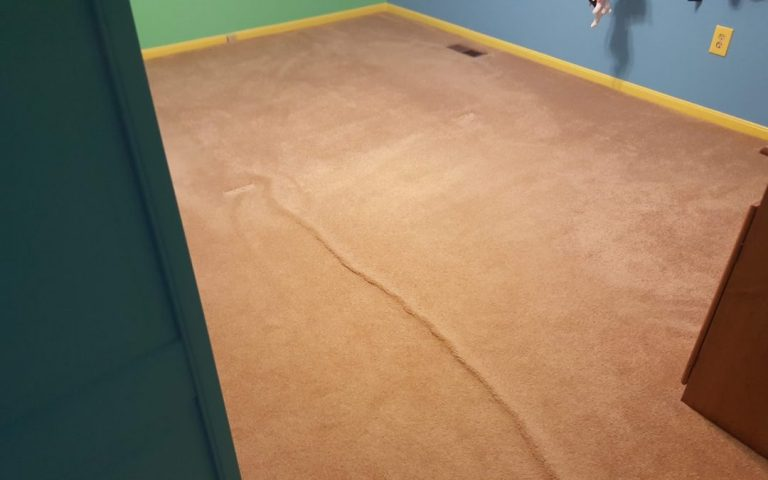 What Causes Carpet to Buckle